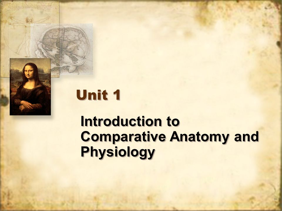 Introduction to Comparative Anatomy and Physiology Unit 1