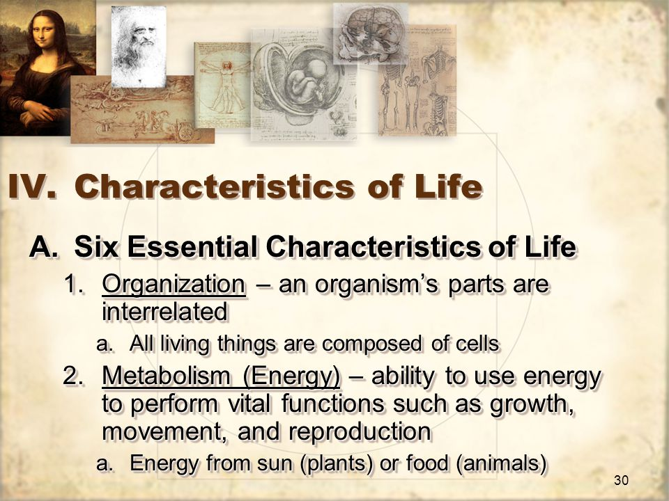 30 IV.Characteristics of Life A.Six Essential Characteristics of Life 1.Organization – an organism's parts are interrelated a.All living things are composed of cells 2.Metabolism (Energy) – ability to use energy to perform vital functions such as growth, movement, and reproduction a.Energy from sun (plants) or food (animals) A.Six Essential Characteristics of Life 1.Organization – an organism's parts are interrelated a.All living things are composed of cells 2.Metabolism (Energy) – ability to use energy to perform vital functions such as growth, movement, and reproduction a.Energy from sun (plants) or food (animals)