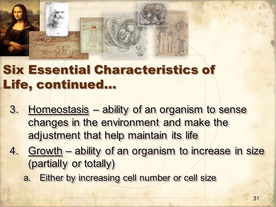 31 Six Essential Characteristics of Life, continued… 3.Homeostasis – ability of an organism to sense changes in the environment and make the adjustment that help maintain its life 4.Growth – ability of an organism to increase in size (partially or totally) a.Either by increasing cell number or cell size 3.Homeostasis – ability of an organism to sense changes in the environment and make the adjustment that help maintain its life 4.Growth – ability of an organism to increase in size (partially or totally) a.Either by increasing cell number or cell size