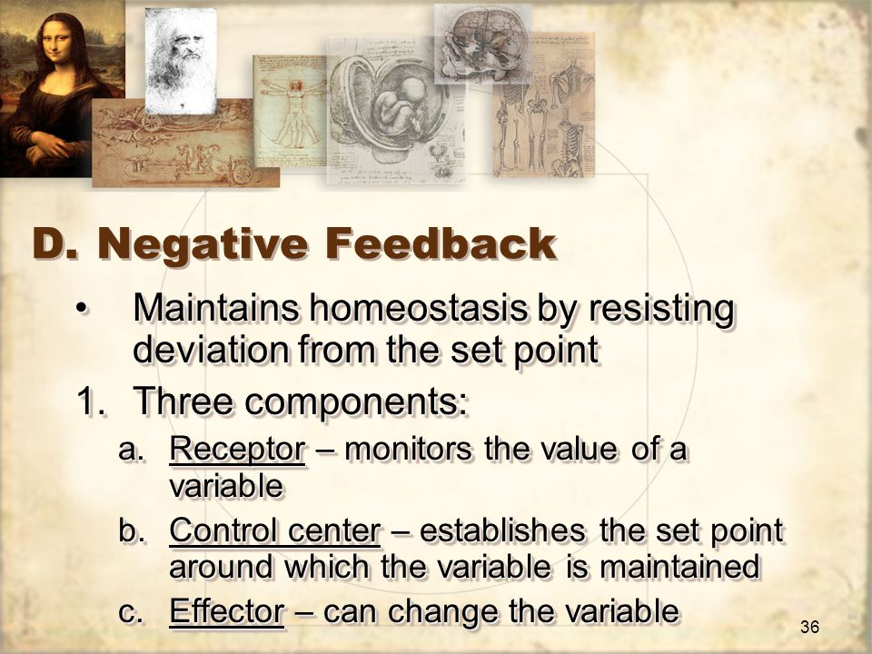37 Negative Feedback, continued… Hole's Essentials of Human Anatomy and Physiology, 8 th ed., Shier, et al, 2003, McGraw-Hill Higher Education 2.Example: Stimulus/Response: exercise increases HR and blood pressure increasesStimulus/Response: exercise increases HR and blood pressure increases Receptor: blood vessels near heartReceptor: blood vessels near heart Control center: brain receives message and sends message to decrease HRControl center: brain receives message and sends message to decrease HR Effector: heart decreases HREffector: heart decreases HR Response: blood pressure decreasesResponse: blood pressure decreases 2.Example: Stimulus/Response: exercise increases HR and blood pressure increasesStimulus/Response: exercise increases HR and blood pressure increases Receptor: blood vessels near heartReceptor: blood vessels near heart Control center: brain receives message and sends message to decrease HRControl center: brain receives message and sends message to decrease HR Effector: heart decreases HREffector: heart decreases HR Response: blood pressure decreasesResponse: blood pressure decreases