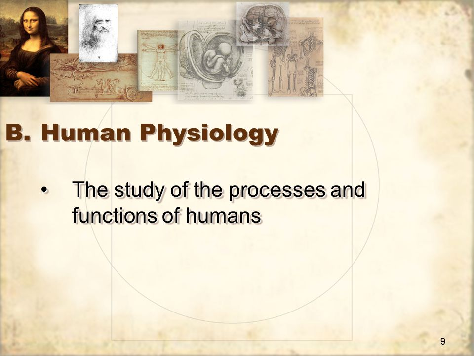 10 C.Cellular and Systemic Physiology The studies of physiology that emphasize specific organizational levelsThe studies of physiology that emphasize specific organizational levels