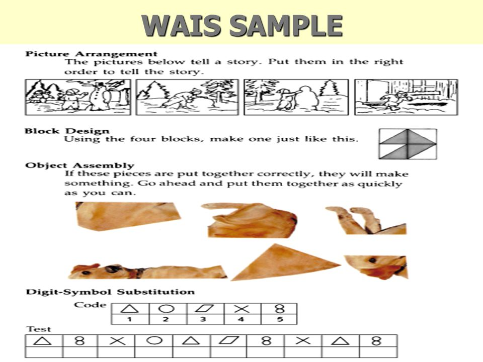 WAIS SAMPLE