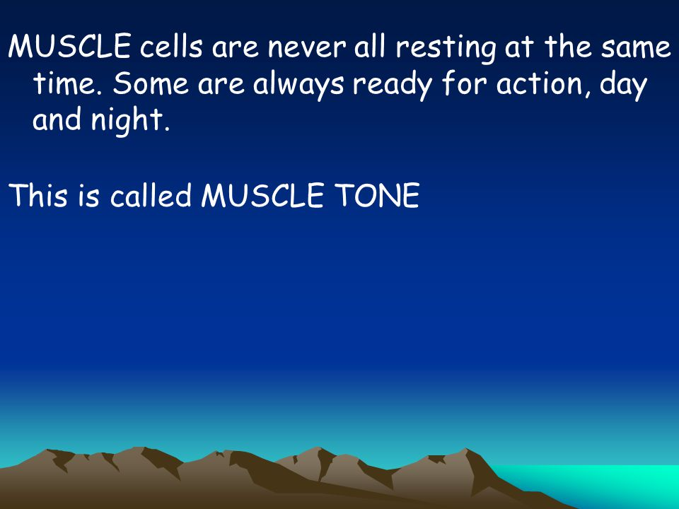 MUSCLE cells are never all resting at the same time. Some are always ready for action, day and night. This is called MUSCLE TONE
