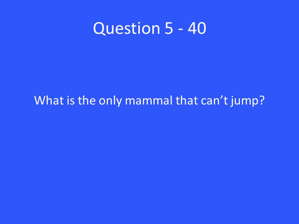 Question 5 - 40 What is the only mammal that can't jump