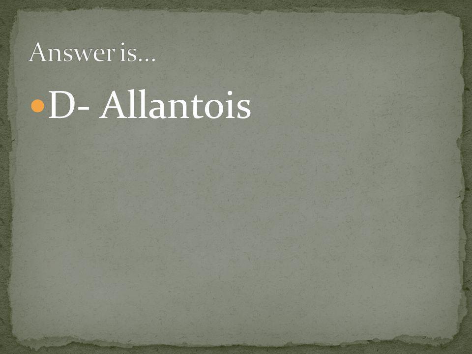 D- Allantois