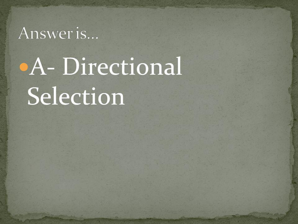 A- Directional Selection
