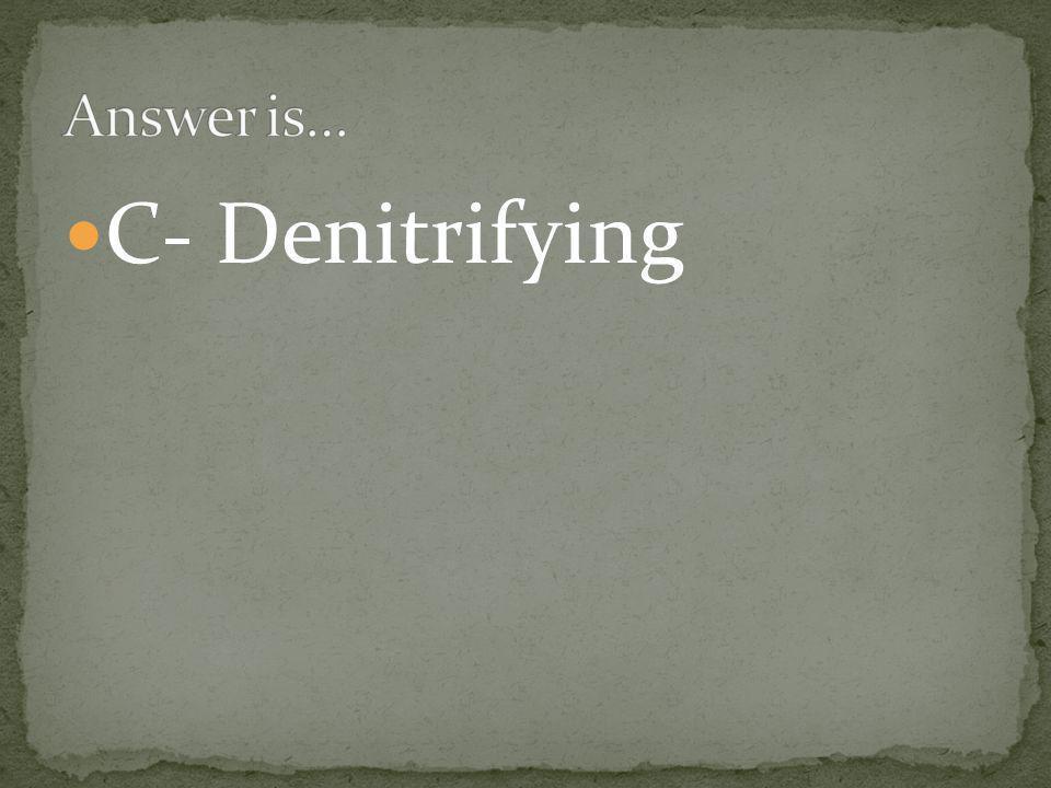 C- Denitrifying