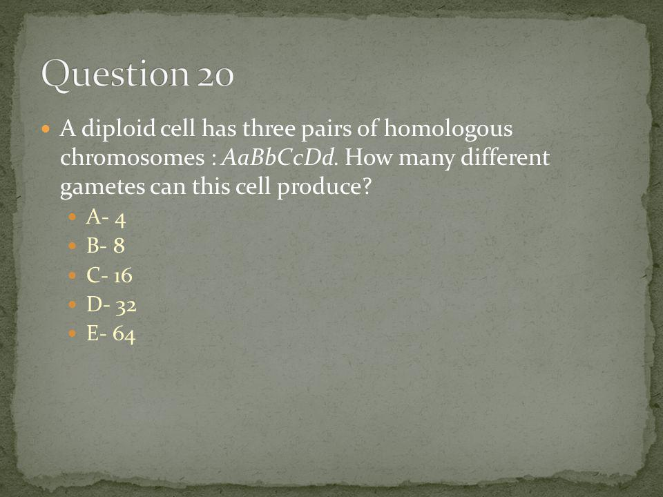 A diploid cell has three pairs of homologous chromosomes : AaBbCcDd. How many different gametes can this cell produce? A- 4 B- 8 C- 16 D- 32 E- 64