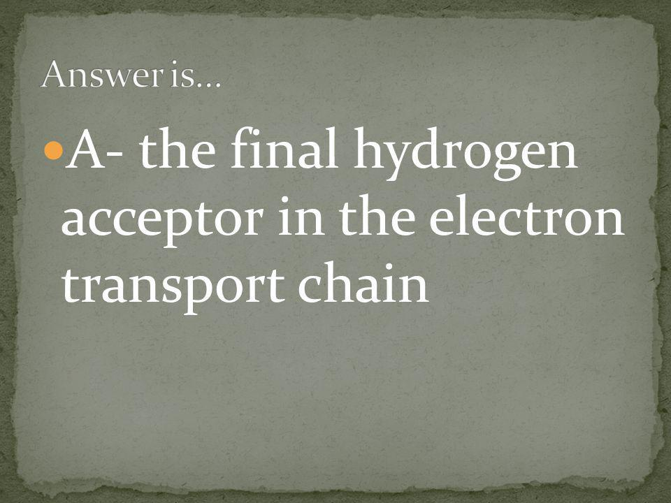 A- the final hydrogen acceptor in the electron transport chain