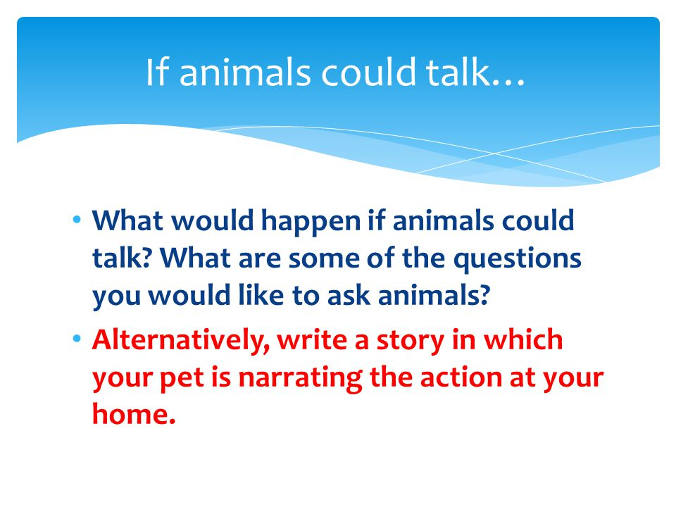 What would happen if animals could talk.