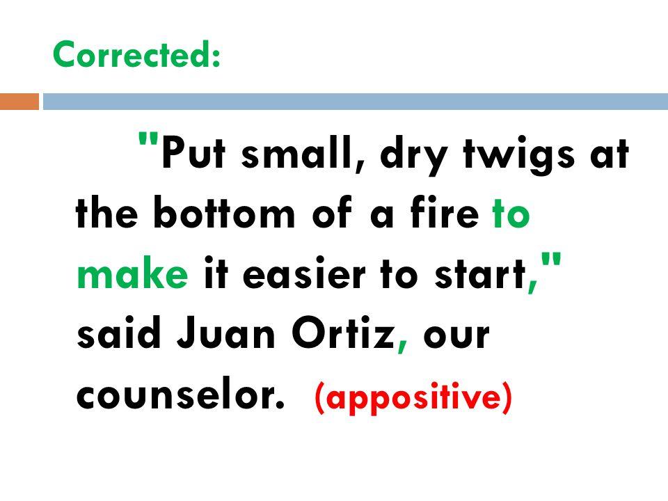 The Appositive  An appositive is a noun or noun phrase that renames another noun right beside it.