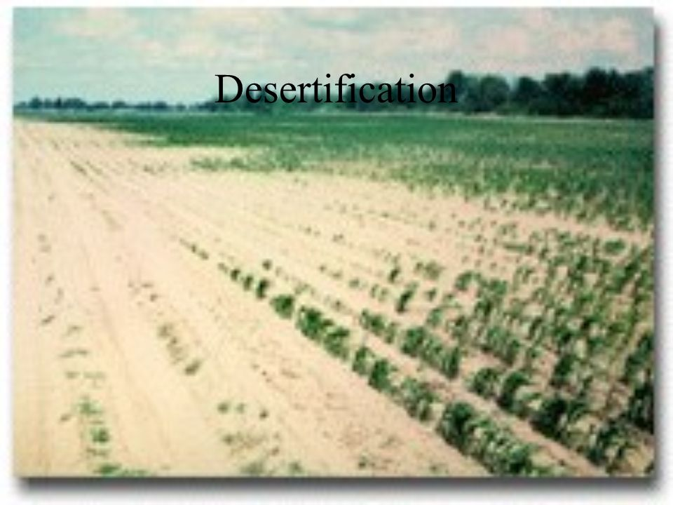 Desertification--the spread of the Sahara to the south, at when I was in college they said it spread south at the rate of about 20 miles per years, and they blamed it on human activity, now they say it is due in large part to mother nature.