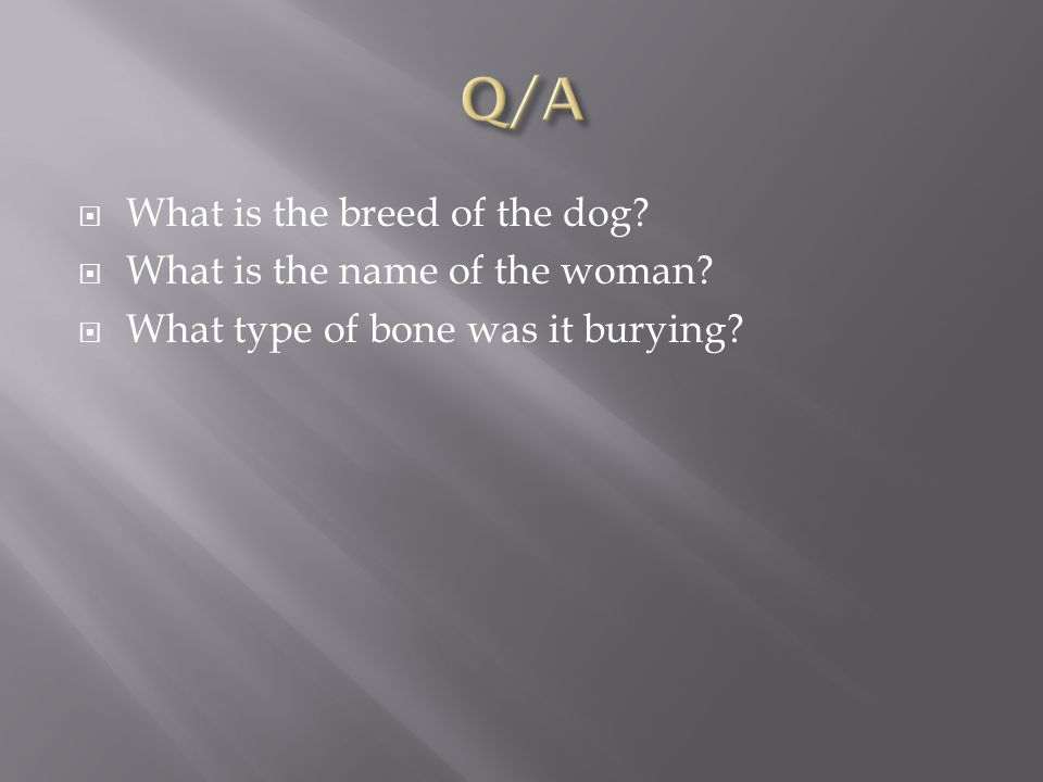  What is the breed of the dog.  What is the name of the woman.