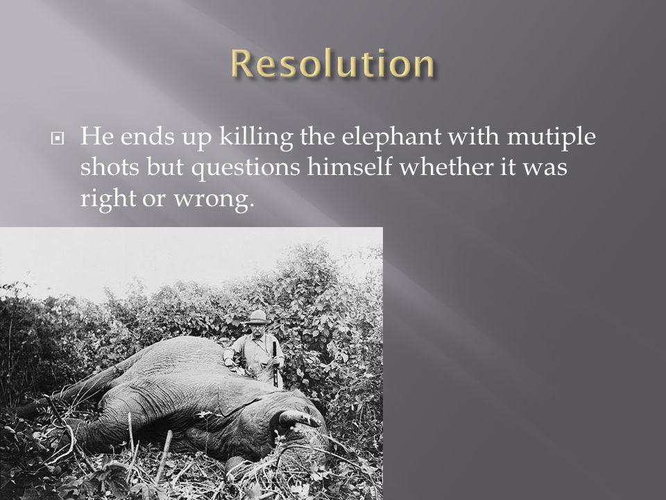  He ends up killing the elephant with mutiple shots but questions himself whether it was right or wrong.