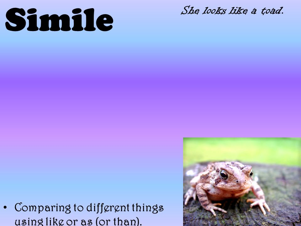 Simile Comparing to different things using like or as (or than). She looks like a toad.
