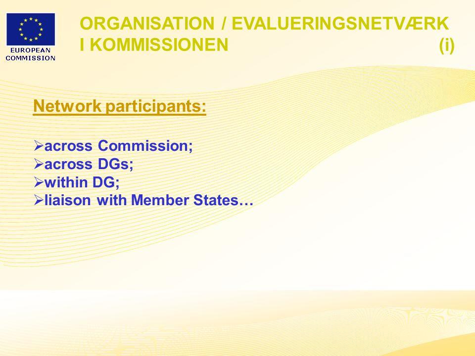 3 ORGANISATION / EVALUERINGSNETVÆRK I KOMMISSIONEN (i) Network participants:  across Commission;  across DGs;  within DG;  liaison with Member States…