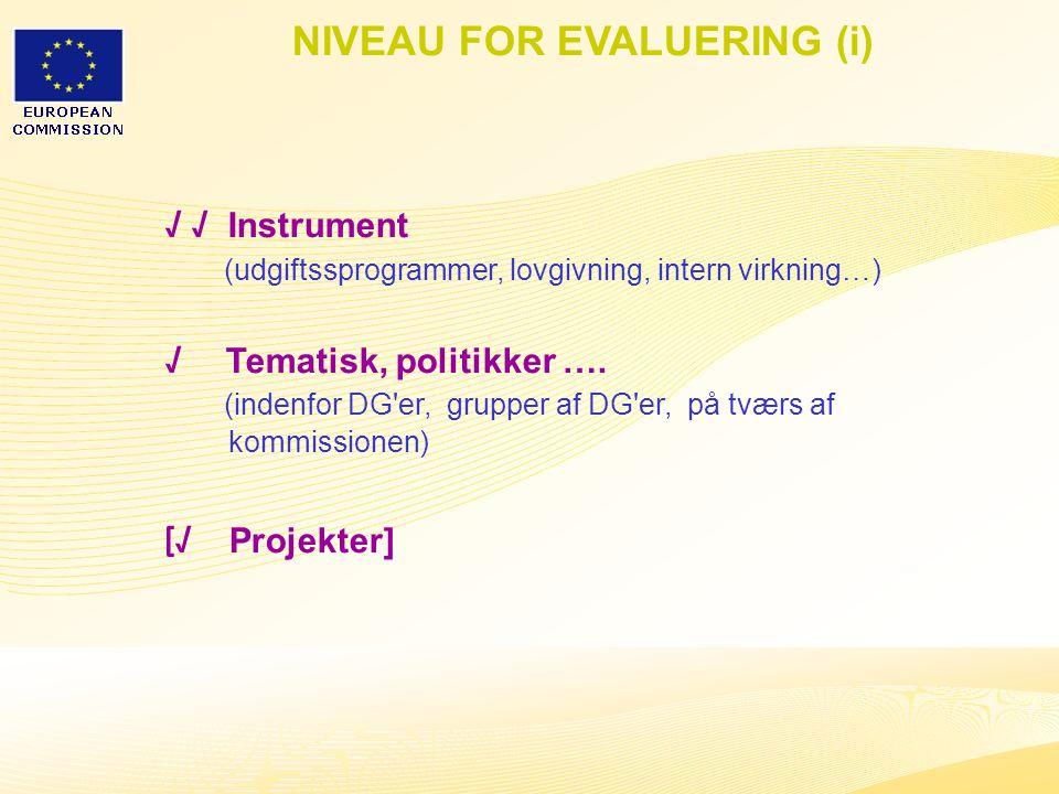 32 NIVEAU FOR EVALUERING (i) √ √ Instrument (udgiftssprogrammer, lovgivning, intern virkning…) √ Tematisk, politikker ….