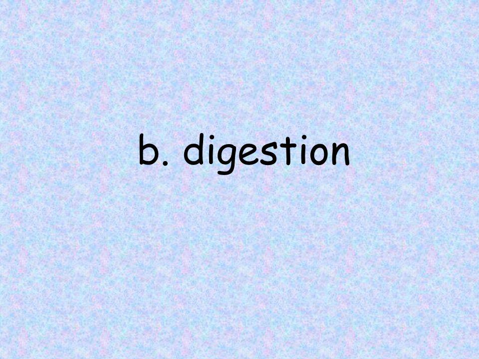 b. digestion