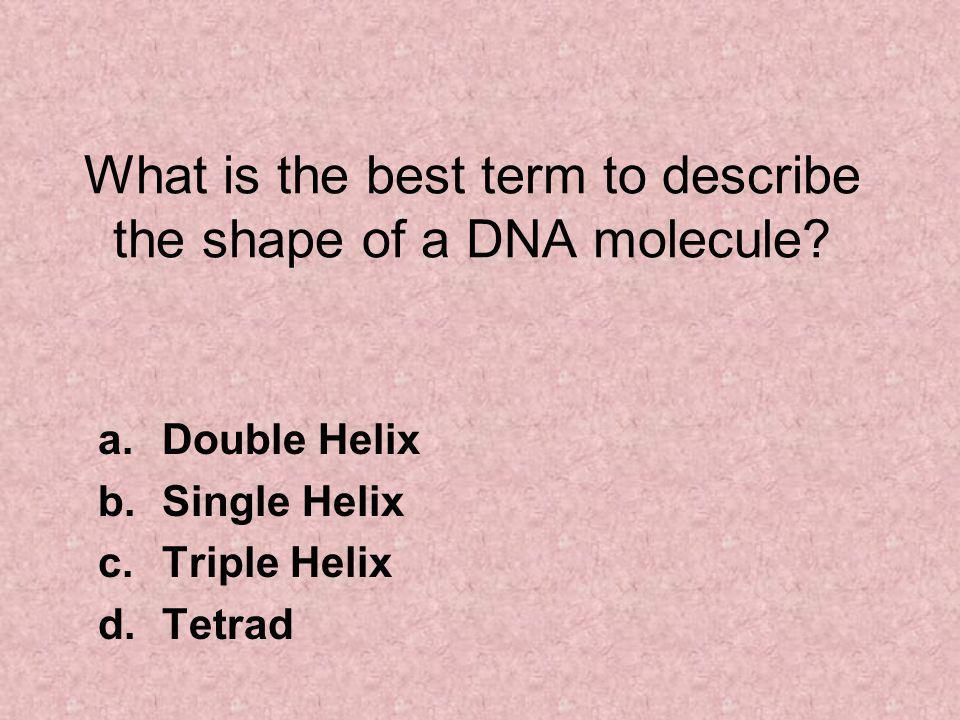 What is the best term to describe the shape of a DNA molecule.