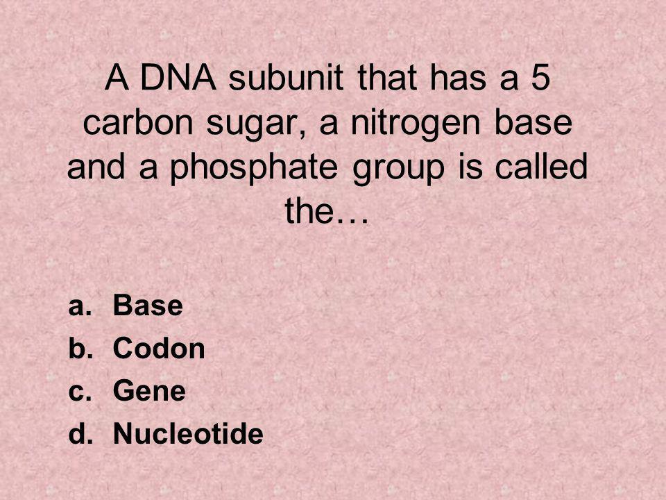 A DNA subunit that has a 5 carbon sugar, a nitrogen base and a phosphate group is called the… a.Base b.Codon c.Gene d.Nucleotide