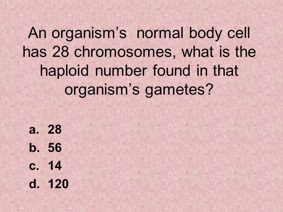 An organism's normal body cell has 28 chromosomes, what is the haploid number found in that organism's gametes.