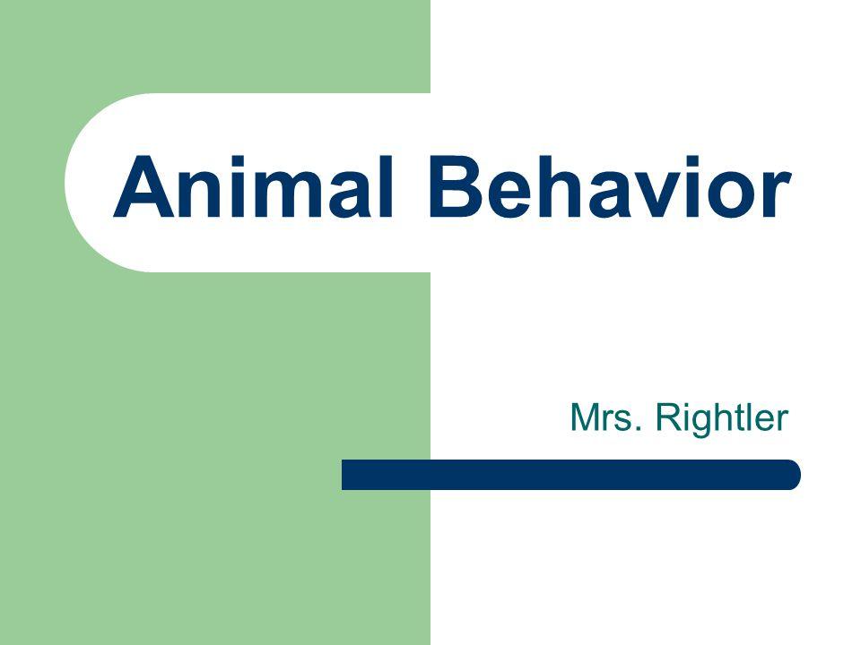 Animal Behavior Mrs. Rightler
