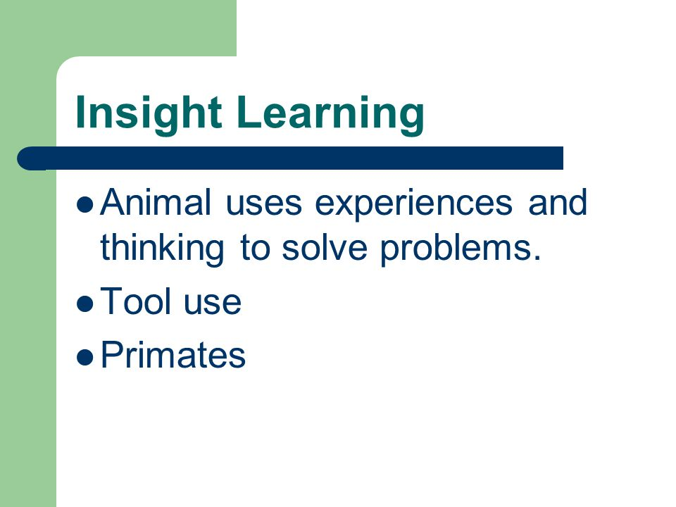 Insight Learning Animal uses experiences and thinking to solve problems. Tool use Primates