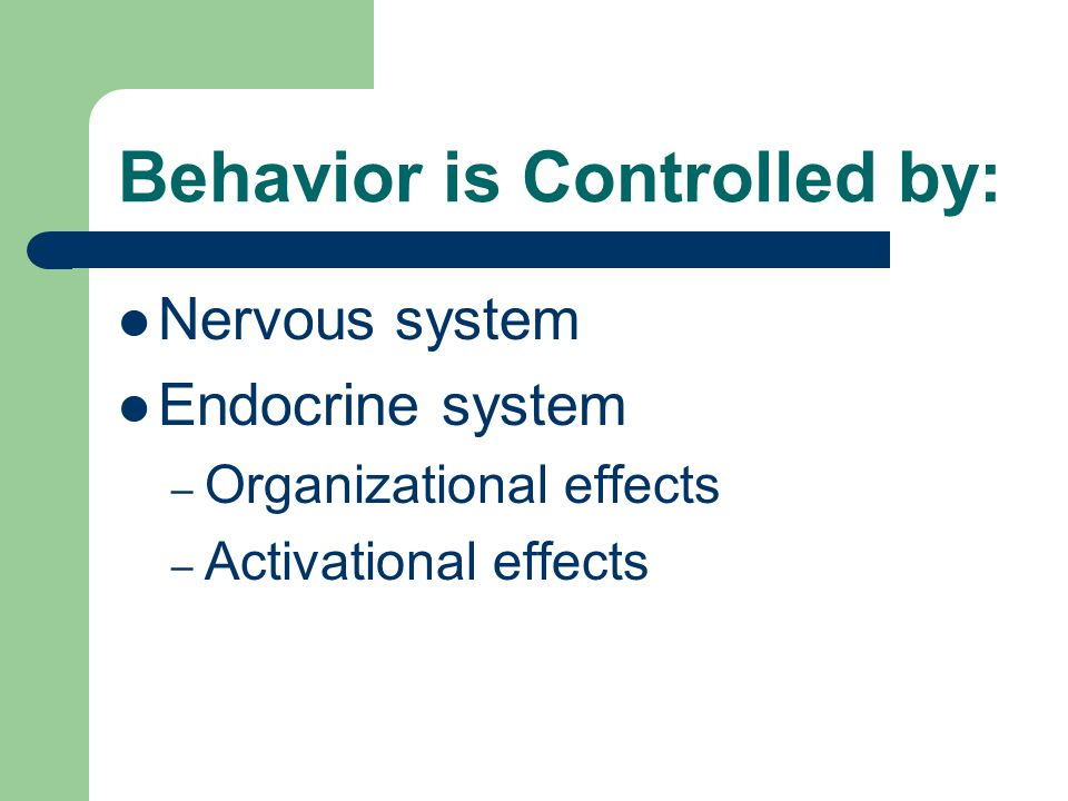 Behavior is Controlled by: Nervous system Endocrine system – Organizational effects – Activational effects