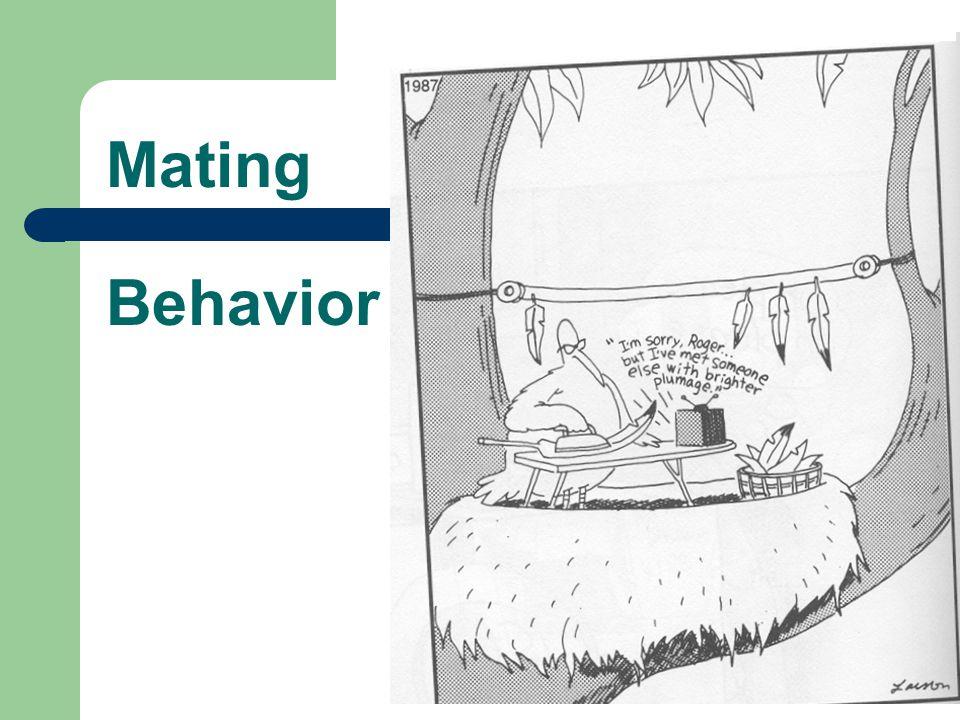 Mating Behavior
