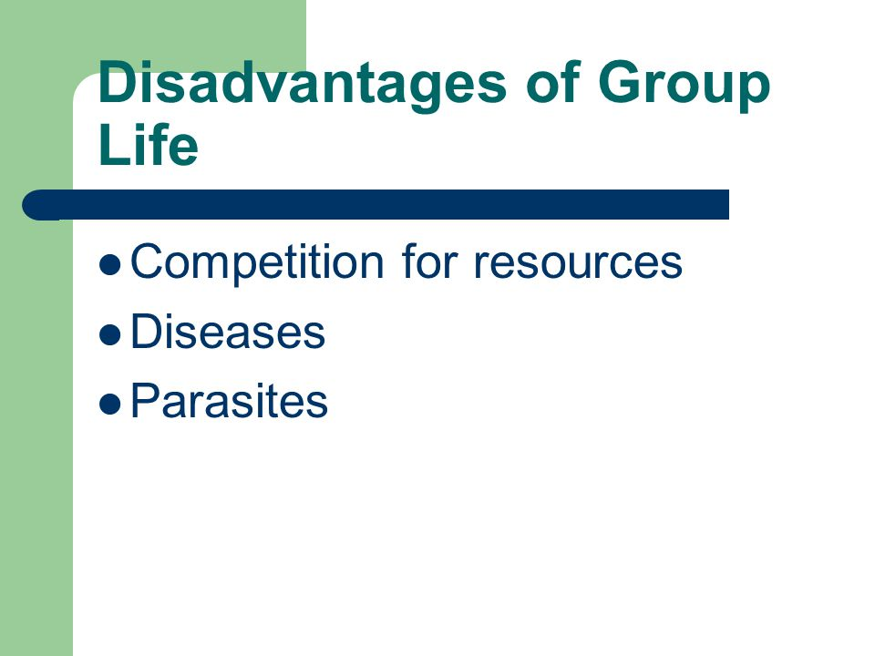 Disadvantages of Group Life Competition for resources Diseases Parasites
