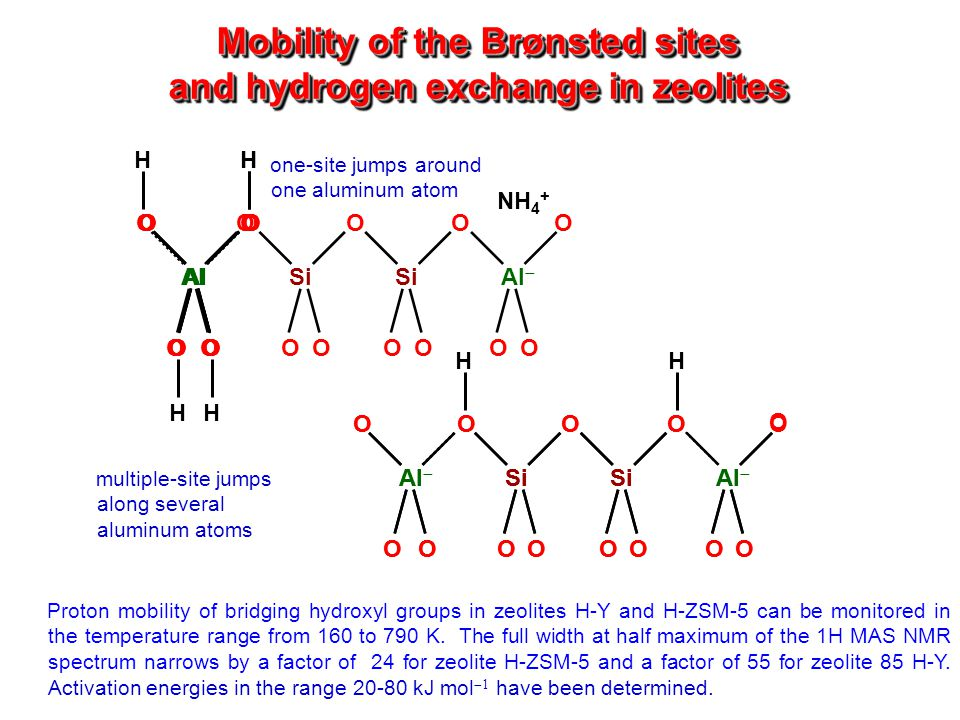 Mobility of the Brønsted sites and hydrogen exchange in zeolites OOOOO OOOOOOO AlSi Al  H O NH 4 + OO OO Al H OO OO H OO OO H OO OO H OOO O O OOOOOOO Al  Si Al H O Proton mobility of bridging hydroxyl groups in zeolites H-Y and H-ZSM-5 can be monitored in the temperature range from 160 to 790 K.