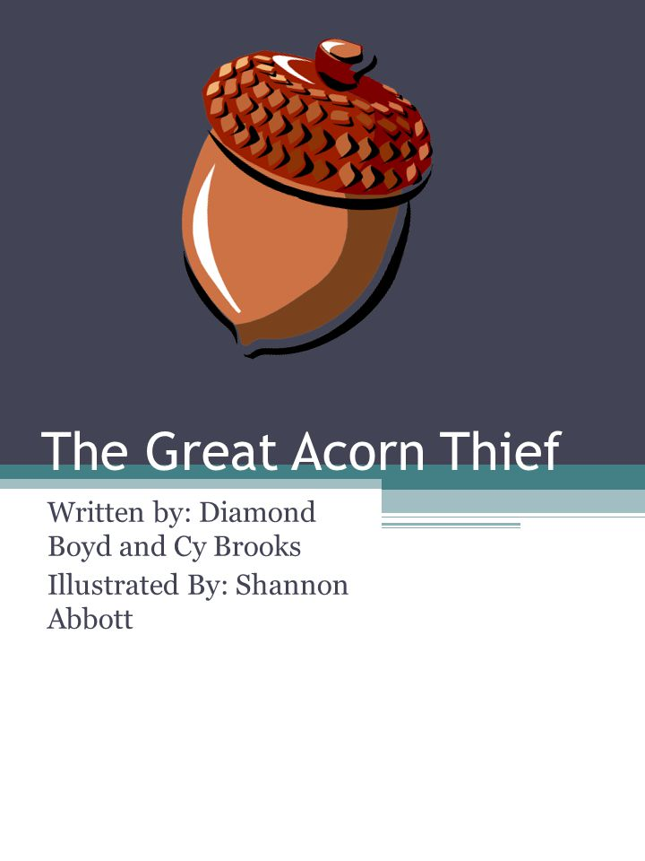 The Great Acorn Thief Written by: Diamond Boyd and Cy Brooks Illustrated By: Shannon Abbott