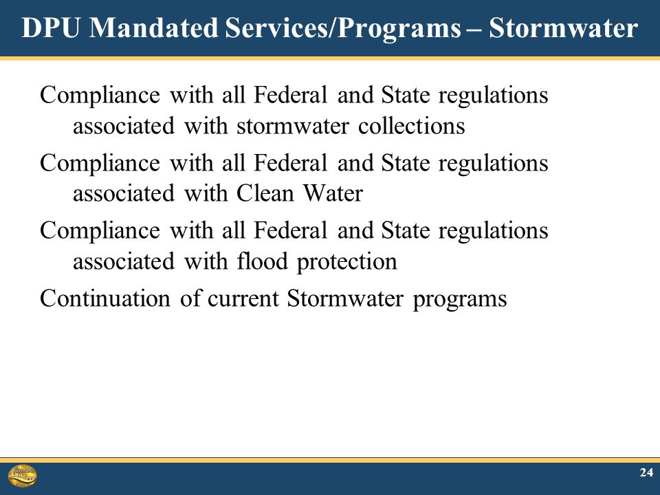 DPU Mandated Services/Programs – Stormwater Compliance with all Federal and State regulations associated with stormwater collections Compliance with all Federal and State regulations associated with Clean Water Compliance with all Federal and State regulations associated with flood protection Continuation of current Stormwater programs 24