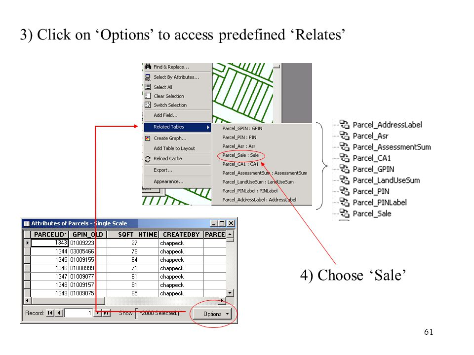 61 3) Click on 'Options' to access predefined 'Relates' 4) Choose 'Sale'