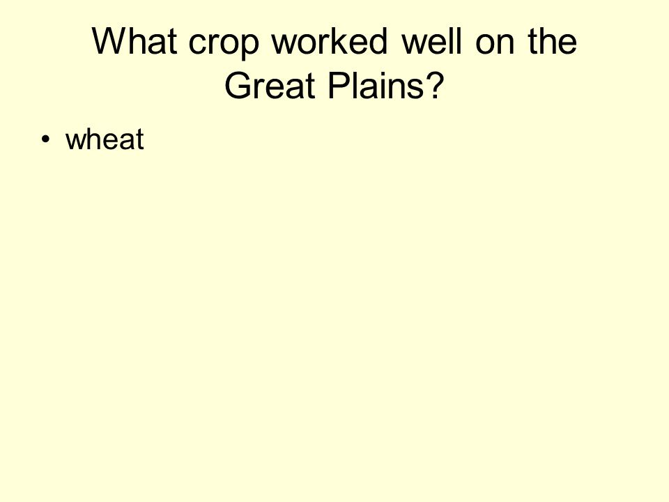 What crop worked well on the Great Plains? wheat