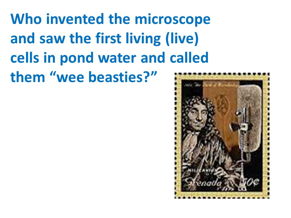 """Who invented the microscope and saw the first living (live) cells in pond water and called them """"wee beasties?"""""""