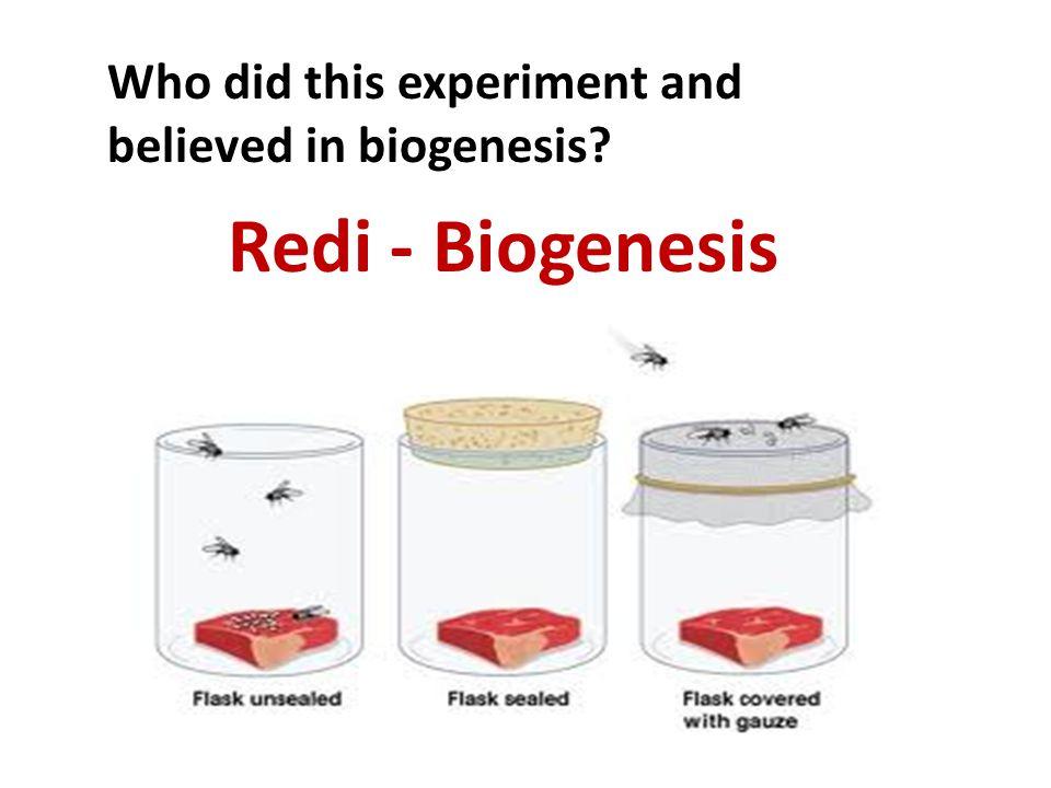 Redi - Biogenesis