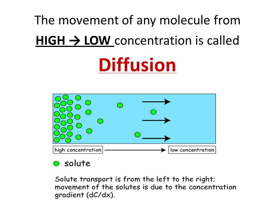 The movement of any molecule from HIGH → LOW concentration is called Diffusion