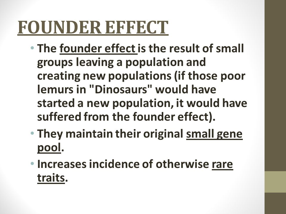 FOUNDER EFFECT The founder effect is the result of small groups leaving a population and creating new populations (if those poor lemurs in Dinosaurs would have started a new population, it would have suffered from the founder effect).
