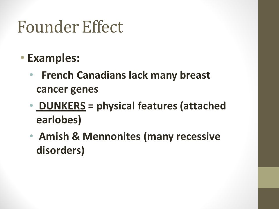 Founder Effect Examples: French Canadians lack many breast cancer genes DUNKERS = physical features (attached earlobes) Amish & Mennonites (many reces