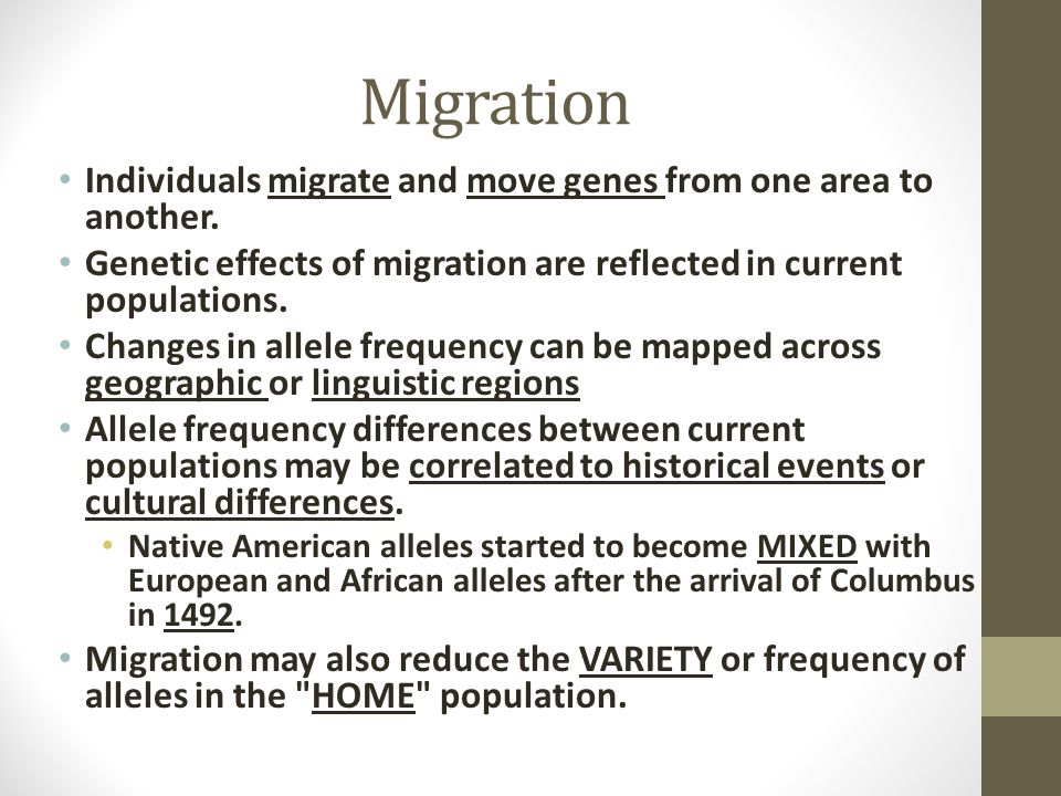 Migration Individuals migrate and move genes from one area to another.