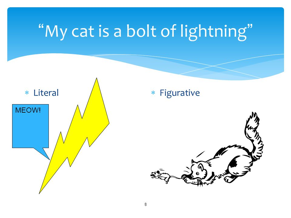 My cat is a bolt of lightning 8  Literal  Figurative MEOW!