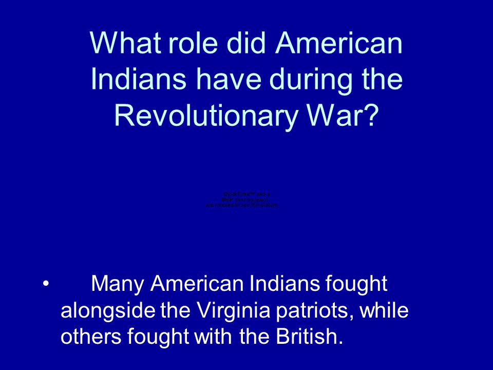 What role did free African Americans have during the Revolutionary War? Some free African Americans fought for independence from Great Britain.