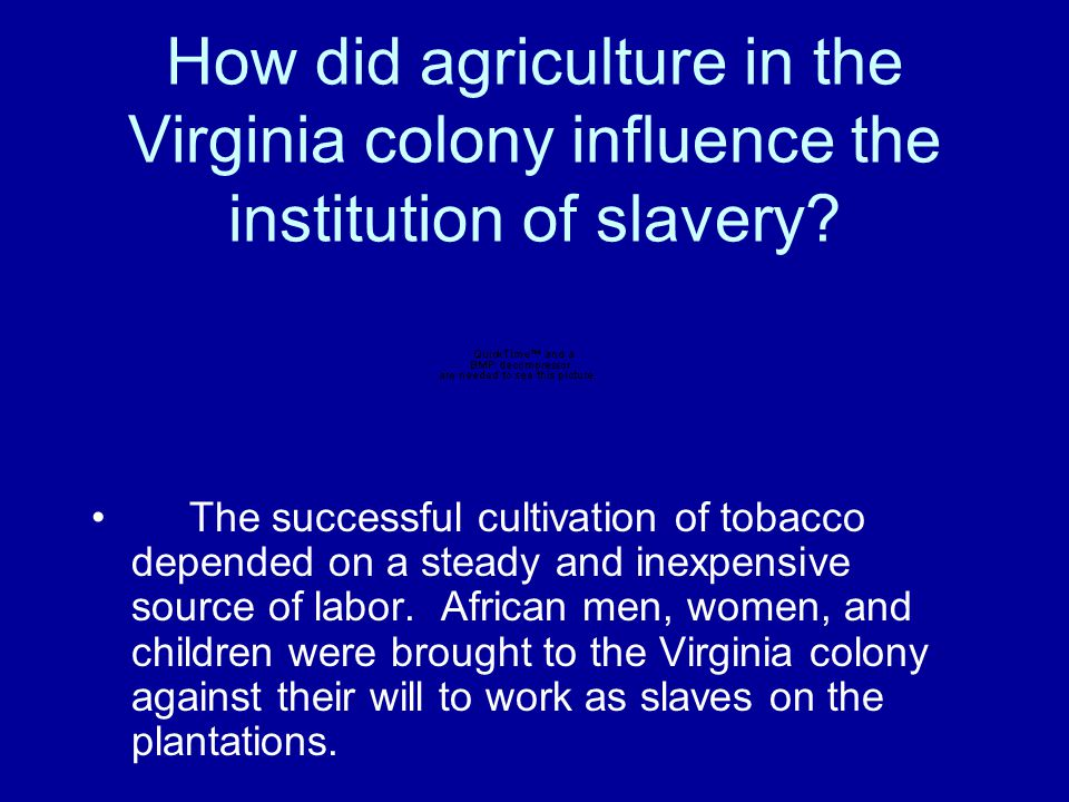 How did agriculture in the Virginia colony influence the institution of slavery.