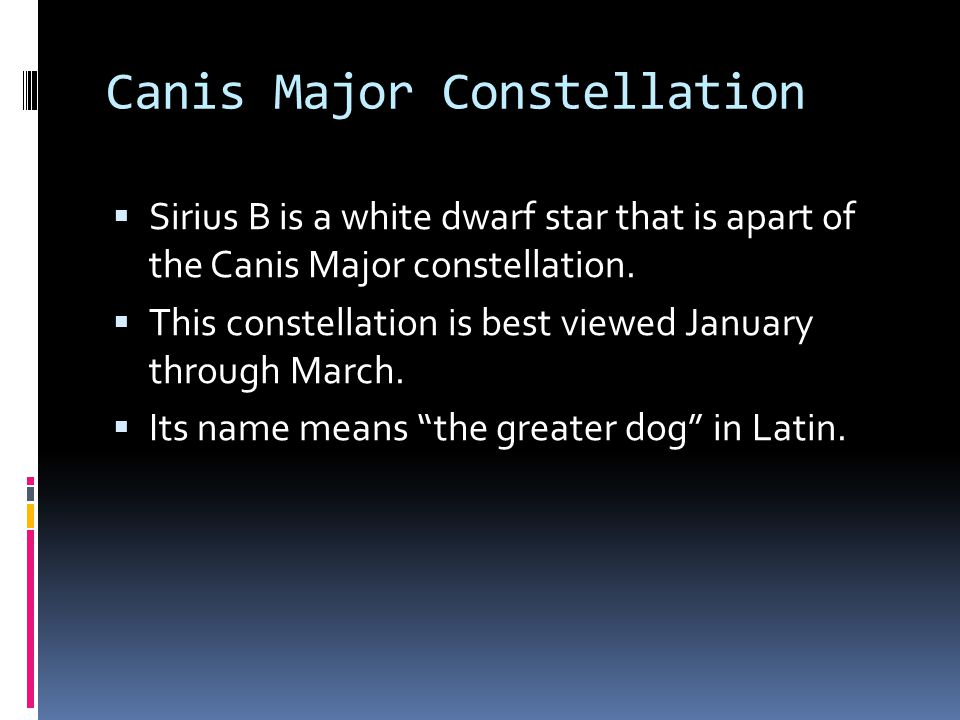 Canis Major Constellation  Sirius B is a white dwarf star that is apart of the Canis Major constellation.