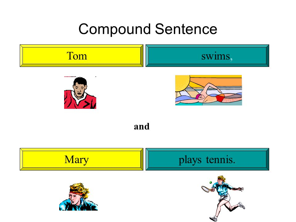 Compound Sentence Tomswims, Maryplays tennis. and