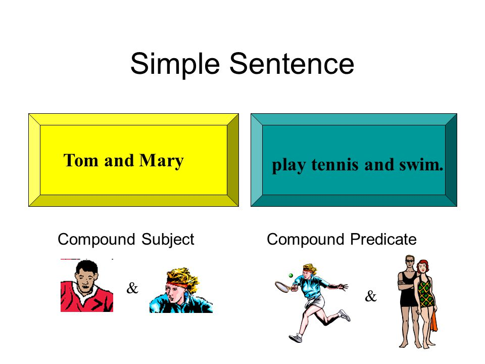 Simple Sentence play tennis and swim. Tom and Mary Compound Subject Compound Predicate & &