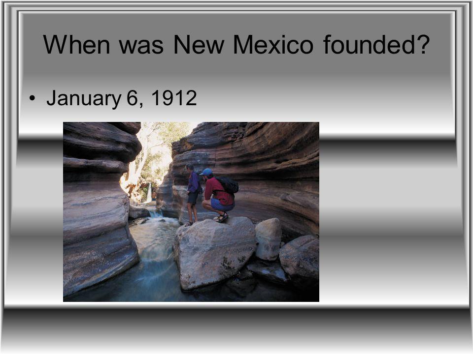 New Mexico's native animals Fish Eagle