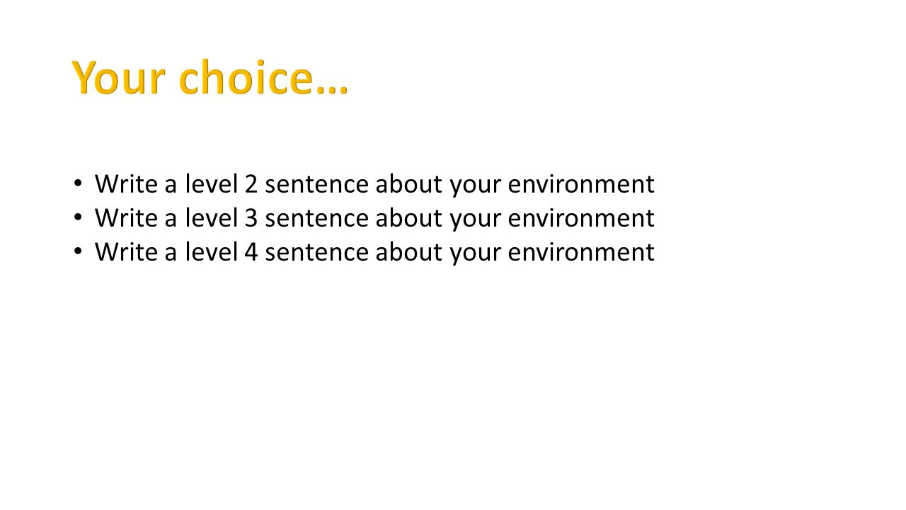 Write a level 2 sentence about your environment Write a level 3 sentence about your environment Write a level 4 sentence about your environment