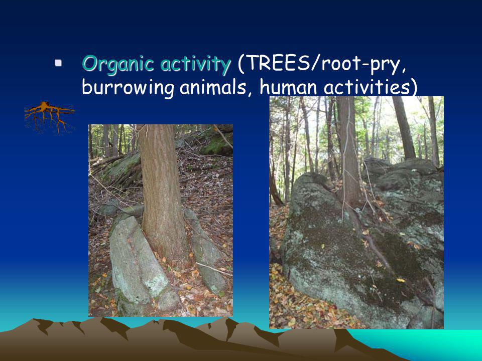Exfoliation or unloading - rock breaks off into leaves or sheets along joints which parallel the ground surface; caused by expansion of rock due to up